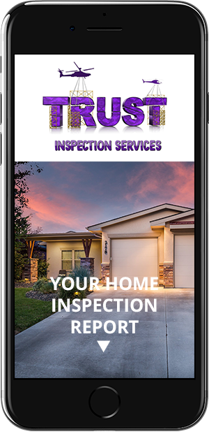 Example Inspection Report on iPhone